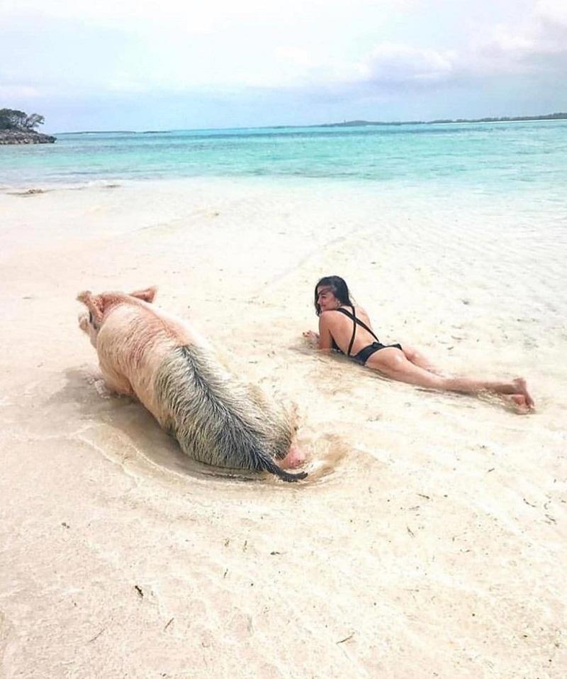 Дай бог, картинки с приколами на пляже